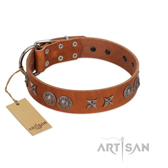 """Splendid Armor"" Premium Quality FDT Artisan Tan Designer Newfoundland Collar with Shields and Stars"
