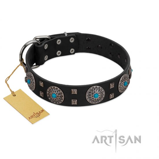 """Boundless Blue"" FDT Artisan Black Leather Newfoundland Collar with Chrome Plated Brooches and Square Studs"