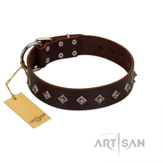 """Boundless Energy"" Premium Quality FDT Artisan Brown Designer Leather Newfoundland Collar with Small Pyramids"