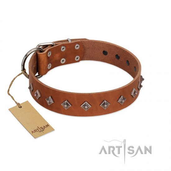 """Broadway"" Handmade FDT Artisan Tan Leather Newfoundland Collar with Dotted Pyramids - Click Image to Close"