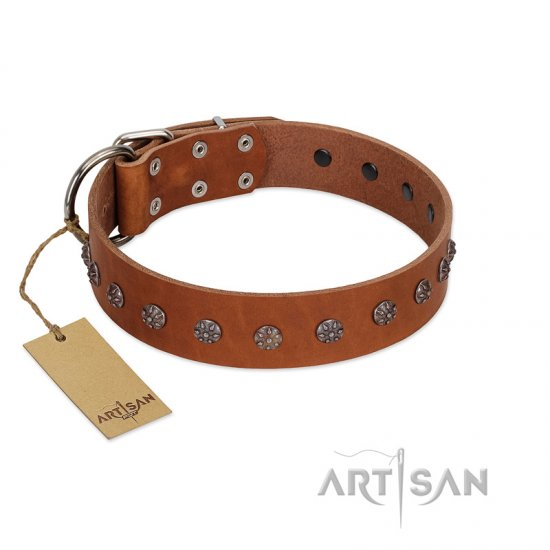 """Daintiness"" Designer Handmade FDT Artisan Tan Leather Newfoundland Collar with Silver-Like Adornments"