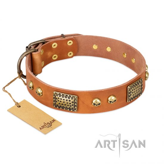 """Saucy Nature"" FDT Artisan Tan Leather Newfoundland Collar with Old Bronze Look Plates and Skulls"