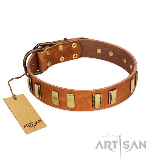 """Olive Slice"" FDT Artisan Tan Leather Newfoundland Collar with Engraved and Smooth Plates"