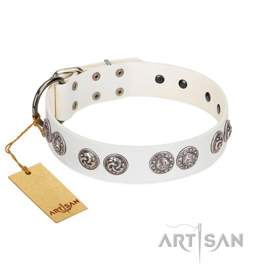 """Eye Candy"" Appealing FDT Artisan White Leather Newfoundland Collar with Chrome Plated Medallions"