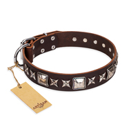 'Perfect Impression' FDT Artisan Newfoundland Brown Leather Dog Collar with Silvery Square Studs - 1 1/2 inch (40 mm) Wide