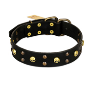 FDT Artisan 'Heavy Metal' Leather Newfoundland Collar with Skulls and Studs 1 1/2 inch (40 mm)