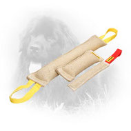 Jute Newfoundland Bite Training Set (3 Dog Items)