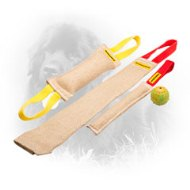 Jute Newfoundland Bite Training Set of 4 Dog Items