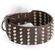 Wide Studded Leather Newfoundland Collar