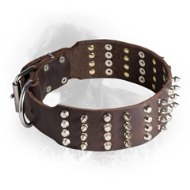 Leather Newfoundland Collar with 4 Rows of Spikes and Studs