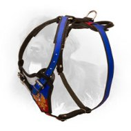 Leather Newfoundland Harness with Russian Flag and Emblem Painting