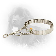 19 Inch Stainless Steel Newfoundland Neck Tech Pinch Collar