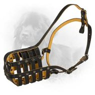 Royal Nappa Padded Leather Newfoundland Muzzle