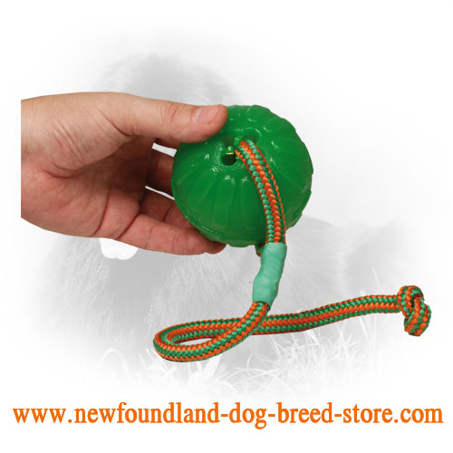 Foam Newfoundland Ball with Strong Nylon String