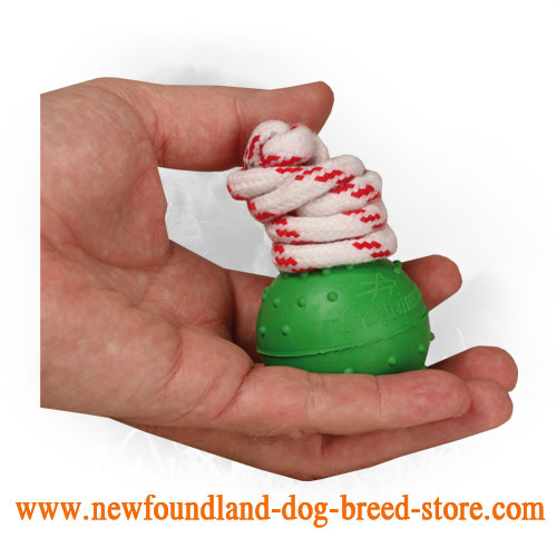 Rubber Newfoundland Ball with Nylon String