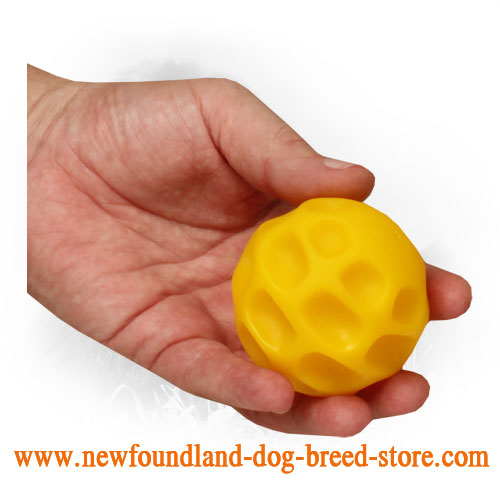 Tetraflex Newfoundland Ball for Chewing