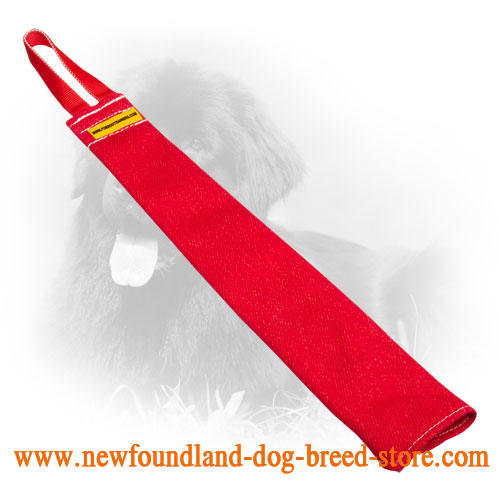 French Linen Newfoundland Bite Rag for Dog Playing