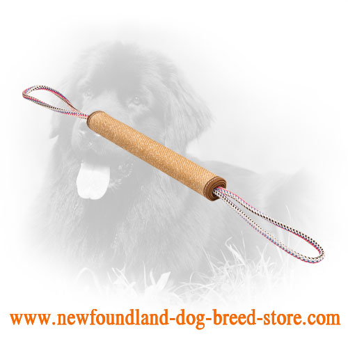 Jute Newfoundland Bite Roll Meant for Puppy Training
