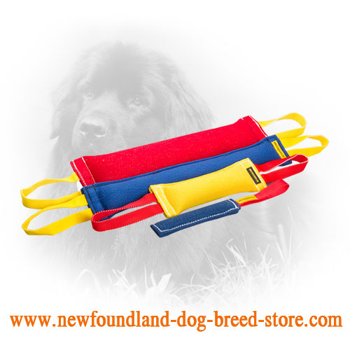 French Linen Newfoundland Bite Training Set for Adult Dogs