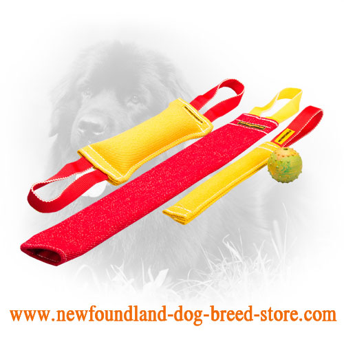 French Linen Newfoundland Bite Training Set for Young Dogs
