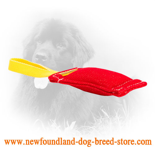 French Linen Newfoundland Bite Tug for Puppy Training
