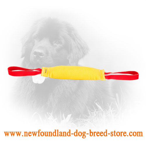 Durable Newfoundland Bite Tug with Two Handles