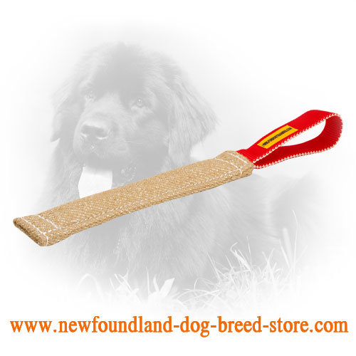 Jute Newfoundland Bite Tug for Developing Bite Skills