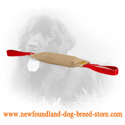 Long Jute Newfoundland Bite Tug for Proper Dog Training