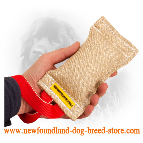Jute Newfoundland Bite Tug with Comfortable Handles