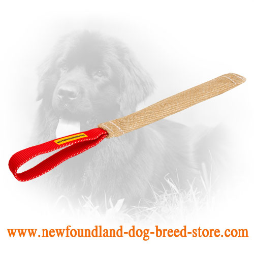 Durable Newfoundland Bite Tug with Comfortable Handle