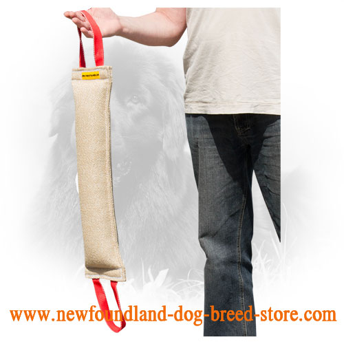 Jute Newfoundland Bite Tug with Two Durable Handles