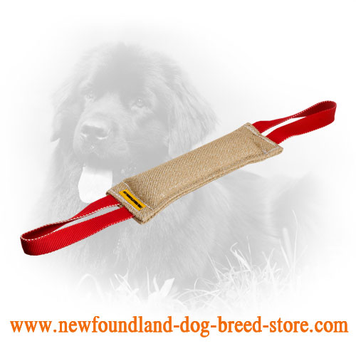 Jute Newfoundland Bite Tug with Two Nylon Handles