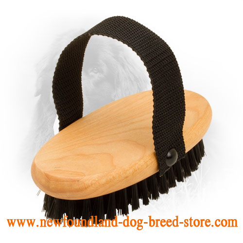 Newfoundland Brush with Nylon Handle for Comfy Use