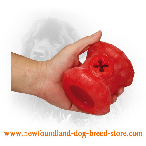 Rubber Newfoundland Toy for Chewing