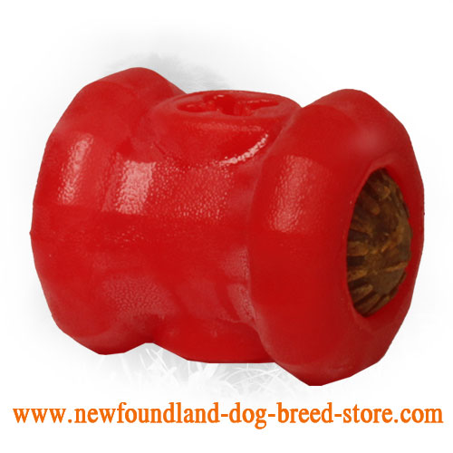 Dog-Safe Chewing Rubber Newfoundland Toy