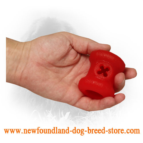 Dog-Safe Rubber Newfoundland Toy with Treats