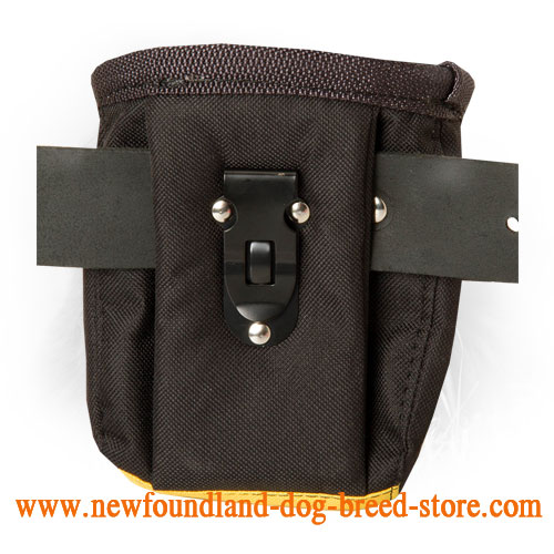 Nylon Dog Treat Bag with Belt Clip for Feeding Your Dog During Training