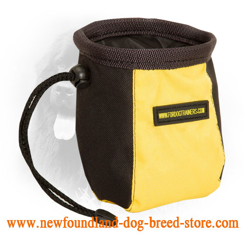 Hands-Free Nylon Dog Treat Bag for Feeding Your Newfoundland