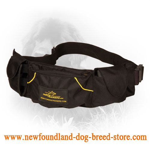 Hands-Free Pouch for Dog Training