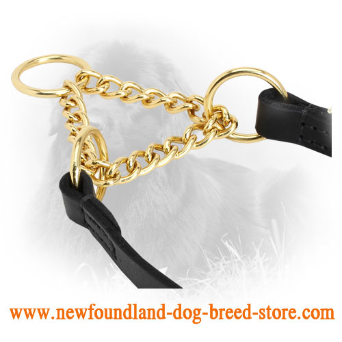 Newfoundland Martingale Collar with Durable Leather Part