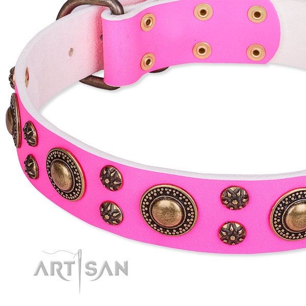 Natural genuine leather dog collar with amazing embellishments