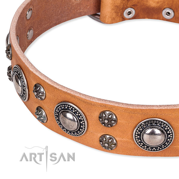 Everyday walking genuine leather collar with corrosion proof buckle and D-ring