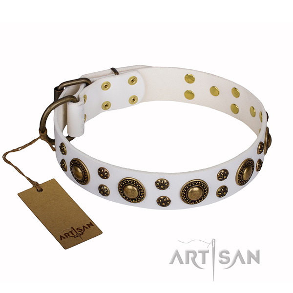 Handy use full grain natural leather collar with embellishments for your pet