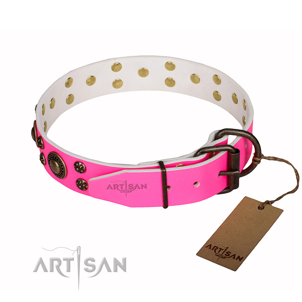 Exquisite full grain leather dog collar for daily walking