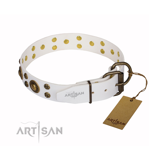 Unique full grain genuine leather dog collar for walking