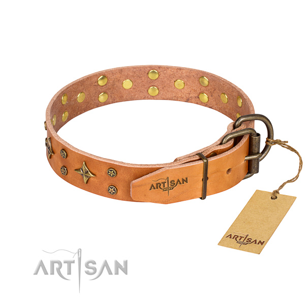 Daily walking leather collar with decorations for your canine