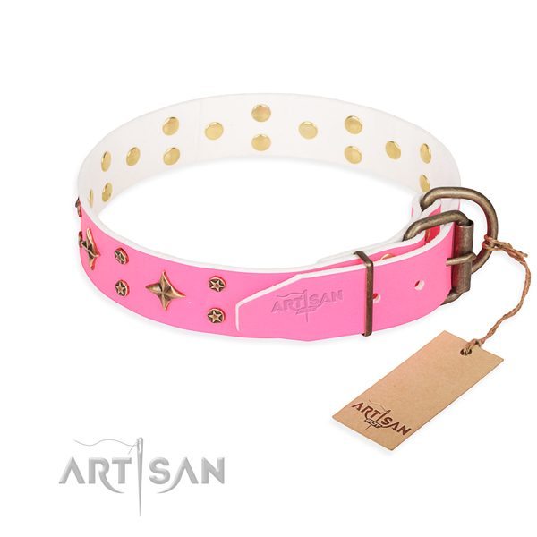 Stylish walking full grain leather collar with adornments for your canine