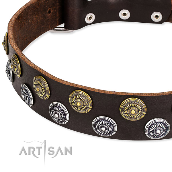 Genuine leather dog collar with unusual studs