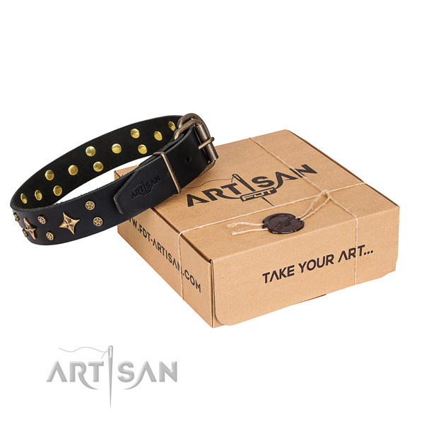 Adorned leather dog collar for walking