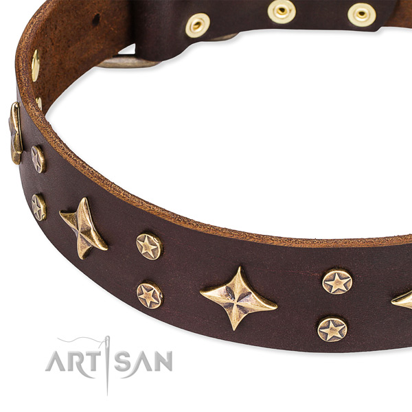 Full grain genuine leather dog collar with top notch studs